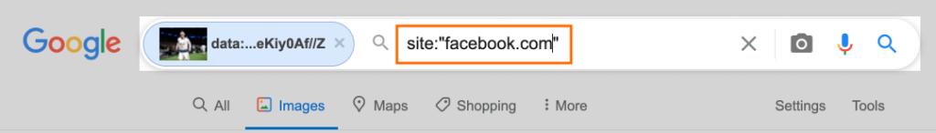 구글 이미지 검색 및 페이스북에서 찾기