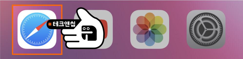사파리 앱